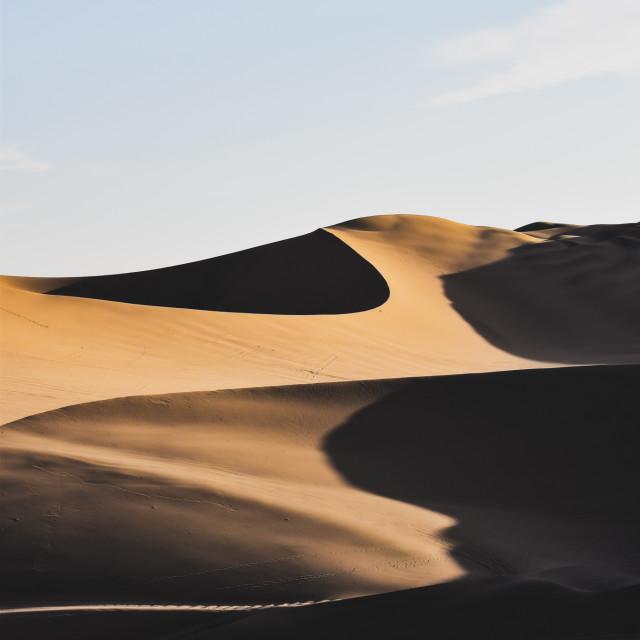 """""""Golden hour in the desert"""" stock image"""