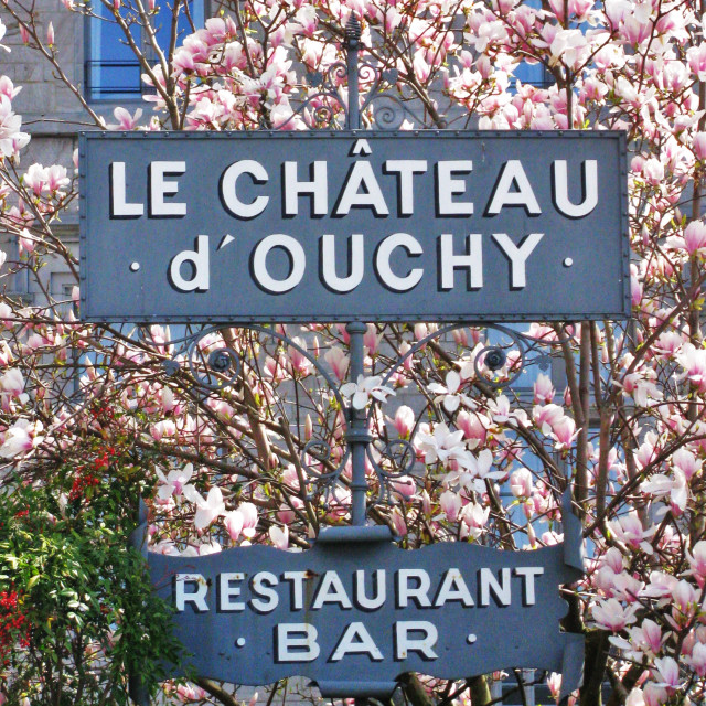 """Le Chateau d' Ouchy"" stock image"