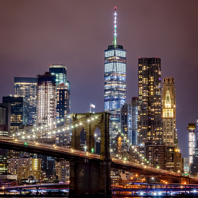 """Brooklyn Bridge and One World Trade Center"" stock image"