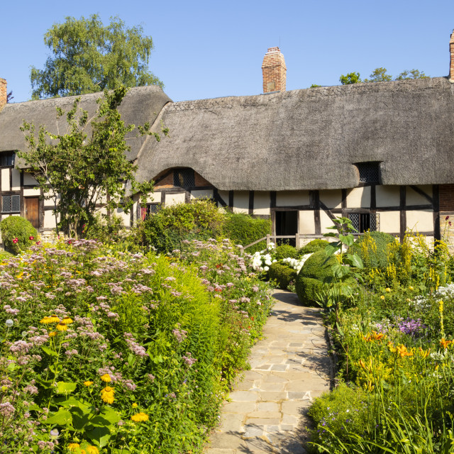 """Anne Hathaway's cottage a thatched cottage in a cottage garden Shottery near..."" stock image"