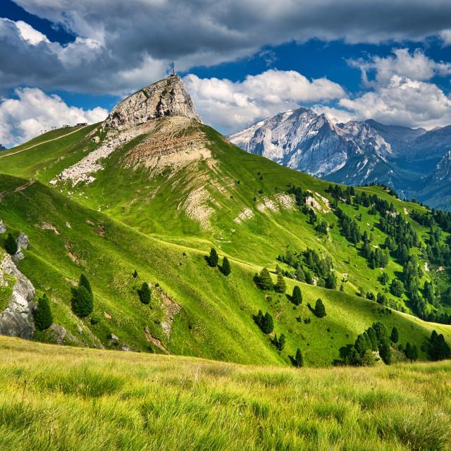 """""""Summer mountain meadows"""" stock image"""