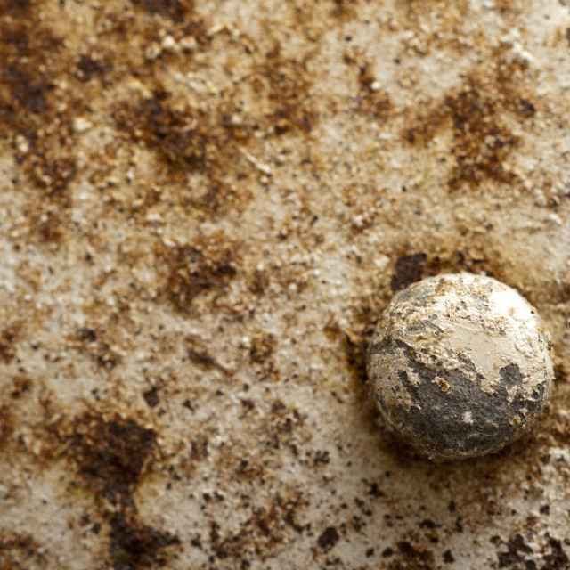 """Rusty metal with old paint in close-up"" stock image"