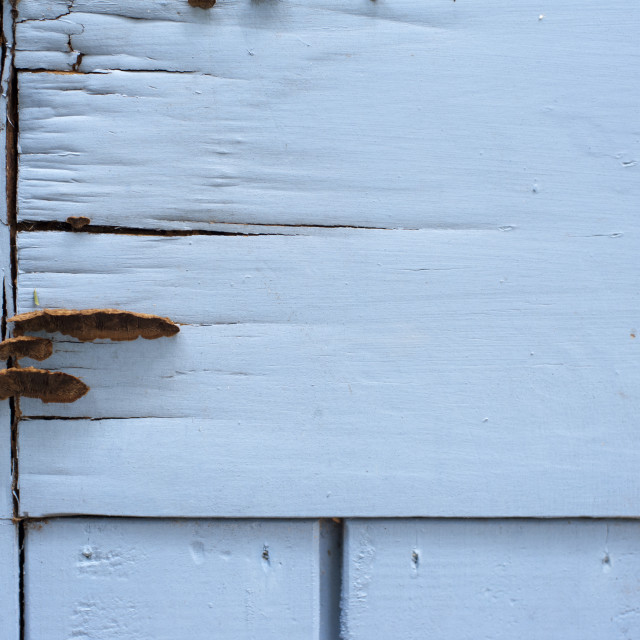 """Old rotten wooden white painted boards"" stock image"