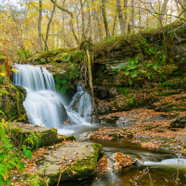 """Edradour Burn just above where it becomes the Black Sprout Waterfall, just..."" stock image"