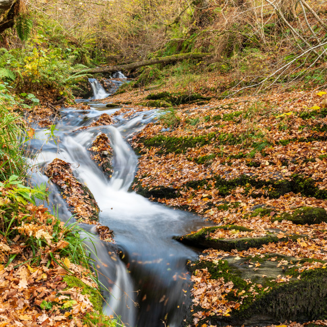 """""""Edradour Burn just above where it becomes the Black Sprout Waterfall, just..."""" stock image"""