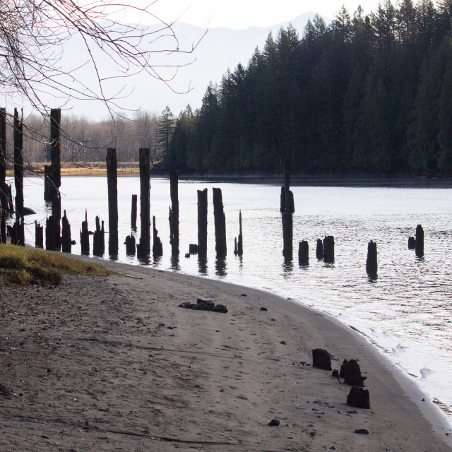 """sandy beach along Harrison river"" stock image"