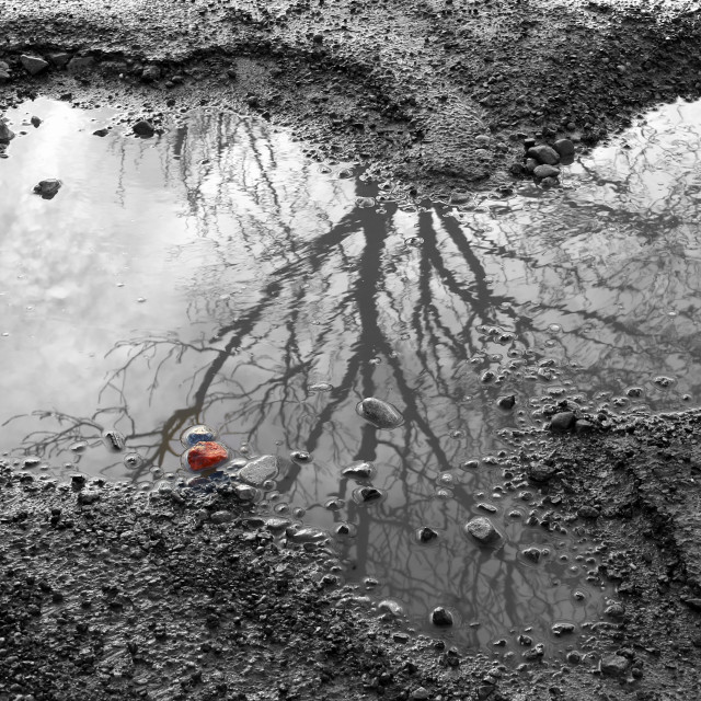 """""""Reflection in puddle"""" stock image"""