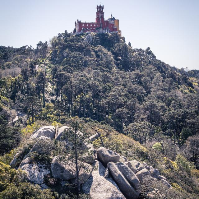 """Sintra Palace"" stock image"