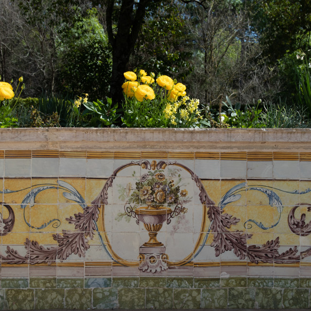 """Portuguese flowers and traditional painted tiles"" stock image"
