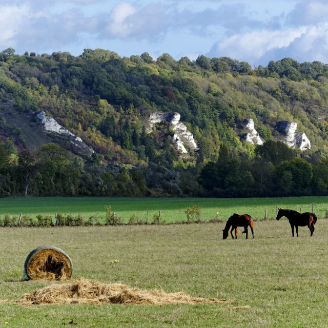 """Horses and cliffs"" stock image"