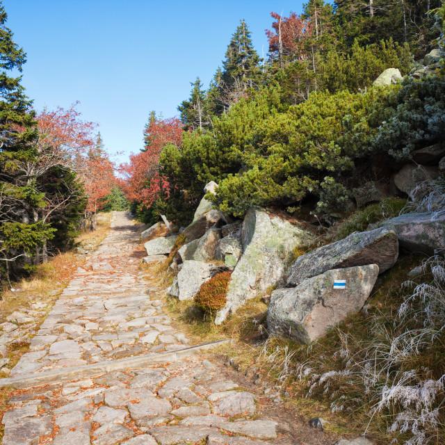 """Stone Path in Autumn Mountains"" stock image"