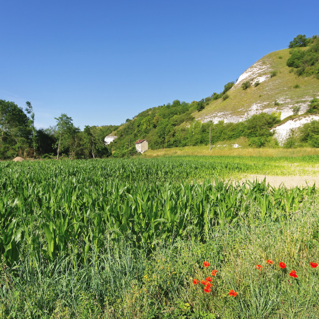 """French Vexin hills"" stock image"