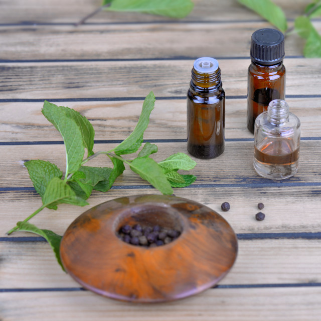 """essential oil from peppermint inbottle and fresh eaf of mint wit"" stock image"