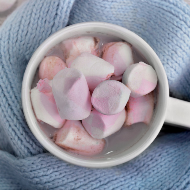 """top view on a mug full of marshmallow in milk chocolate on a blu"" stock image"