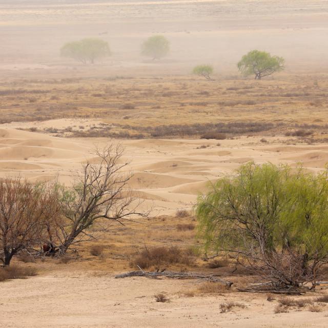 """Dust storm on barren plain"" stock image"