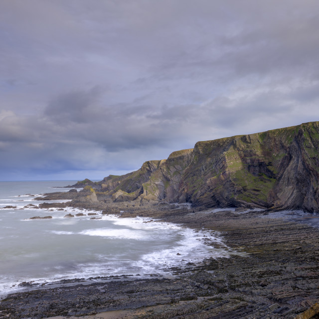 """Golden hour morning light on the coast and cliffs near Hartland"" stock image"