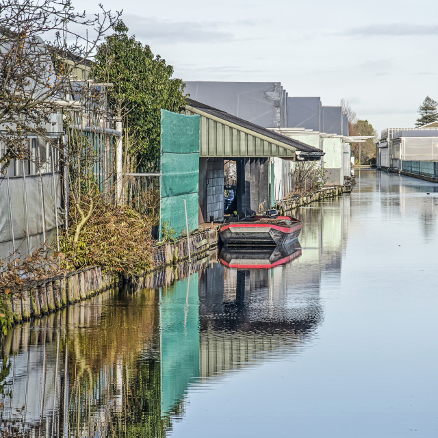 """""""Reflective canal in Boskoop, The Netherlands"""" stock image"""