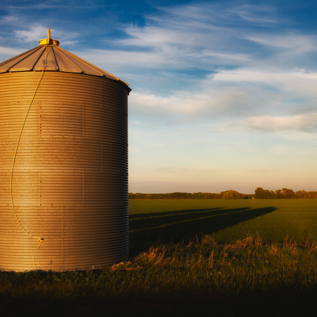 """""""One steel grain bin in a green agriculture field in a summer countryside sunset landscape"""" stock image"""