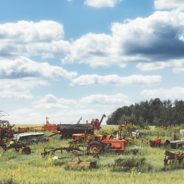 """""""A junkyard of old and rusted assorted farm equipment in tall green grass under a cloudy blue sky in a summer afternoon landscape"""" stock image"""