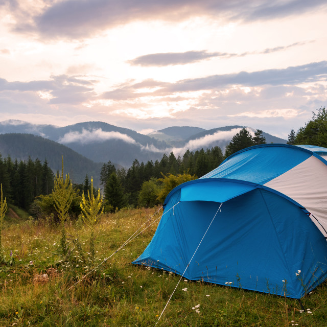 """""""Tent in forest meadow."""" stock image"""