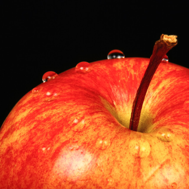 """Red eating apple isolated on a black background with water drops"" stock image"