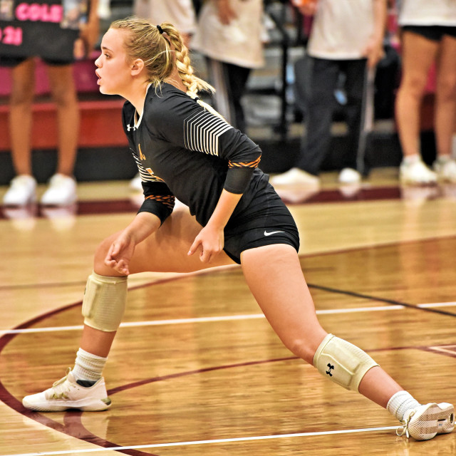 """""""2019 Lady Jacket Volleyball"""" stock image"""