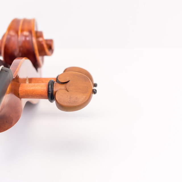 """violin scroll with tuning pegs close up"" stock image"