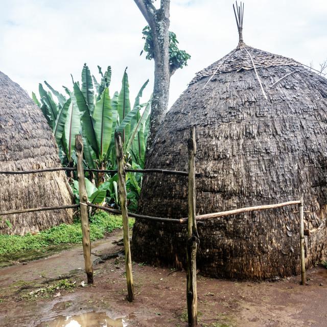 """Dorze village visit"" stock image"