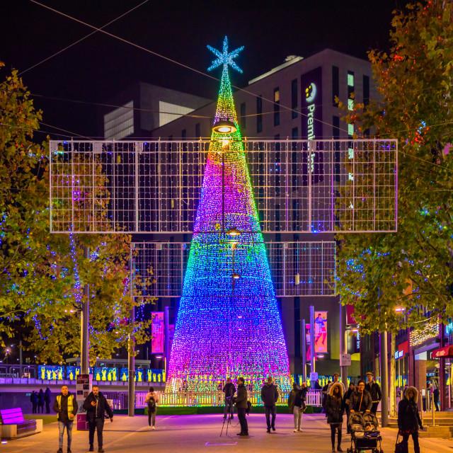 """""""The Hopeful Tree - Wembley Park, London, UK (I)"""" stock image"""