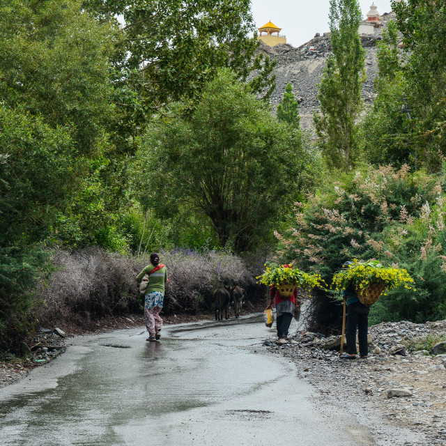 """Tibetan people walking on rural road"" stock image"