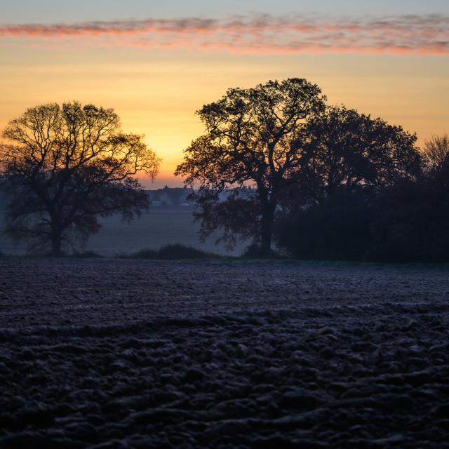 """A Winters Sunrise"" stock image"