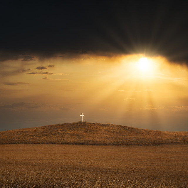 """""""A sunrise over a white wooden religous cross on a brown hill in a deserted springtime landscape"""" stock image"""