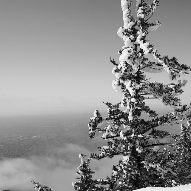 """Sandia Mountains 111319 Black and White"" stock image"