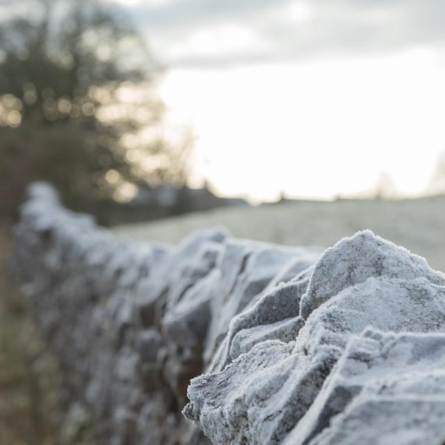 """Drystone Wall in Winter"" stock image"