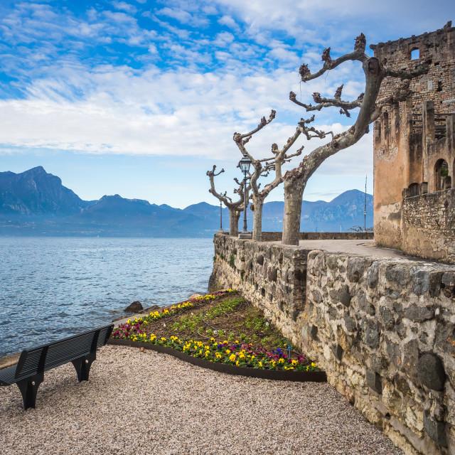 """""""Torri del Benaco castle on Garda Lake"""" stock image"""