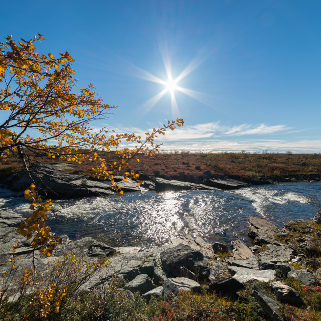 """Autumn at the mountain"" stock image"