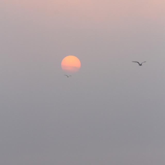 """Black sea morning"" stock image"
