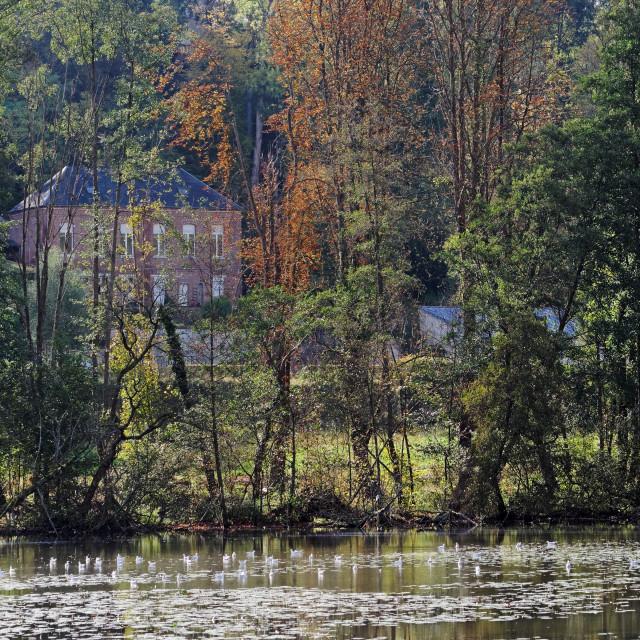 """Pierrefonds lake colors"" stock image"