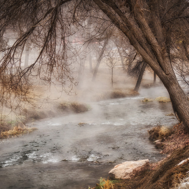 """""""Steam rising off a geothermal stream under overhanging bare branches in springtime South Dakota"""" stock image"""