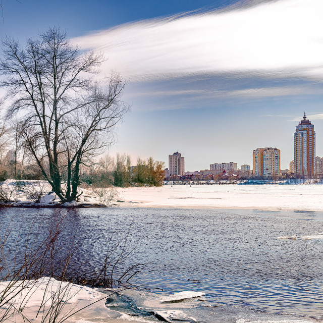 """""""View of willow trees and poplars close to the River in Kiev duri"""" stock image"""