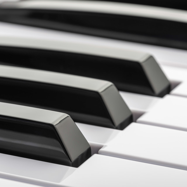 """""""Black and white keys of a music keyboard"""" stock image"""