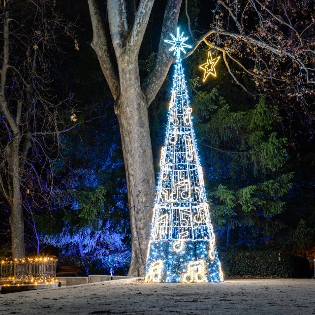 """Royal Botanical Garden of Madrid illuminated during Christmas time. A luminous fairytale landscape with Christmas light shows"" stock image"
