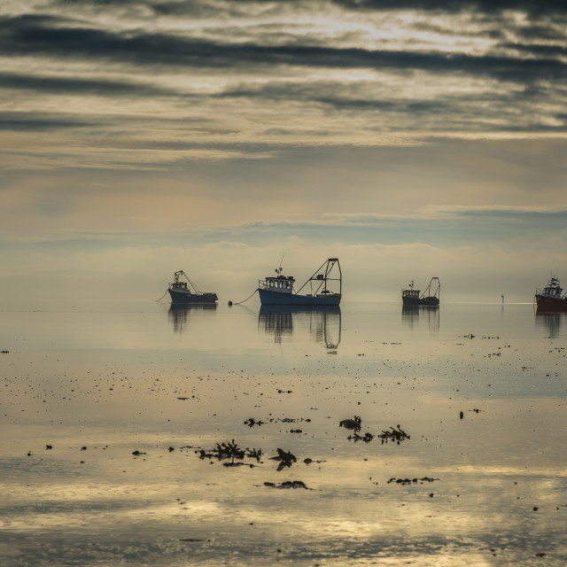 """""""Oyster Fishing Boats On Lough Foyle"""" stock image"""