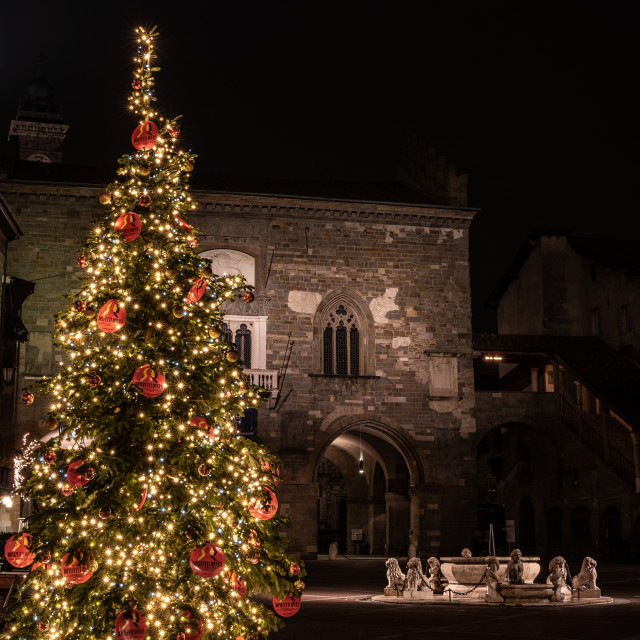 """Christmas tree in Piazza Vecchia"" stock image"