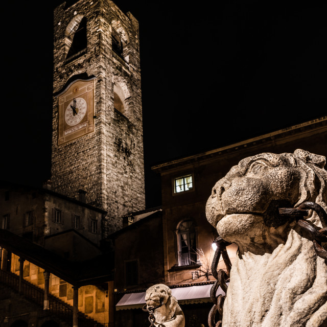 """""""close up of the lion of the Contarini fountain"""" stock image"""