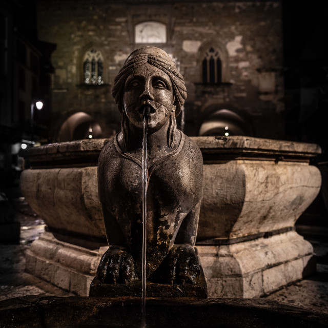 """""""Night image of the fountain detail of Piazza Vecchia."""" stock image"""