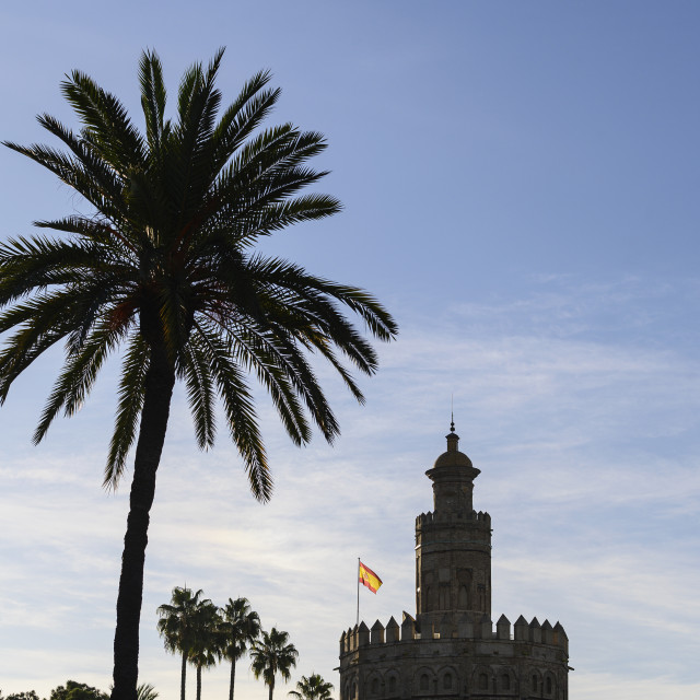 """""""VIEW OF ICONIC TORRE DEL ORO, SEVILLE, SPAIN"""" stock image"""