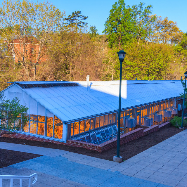 """Gilmer Hall Greenhouse at the University of Virginia."" stock image"