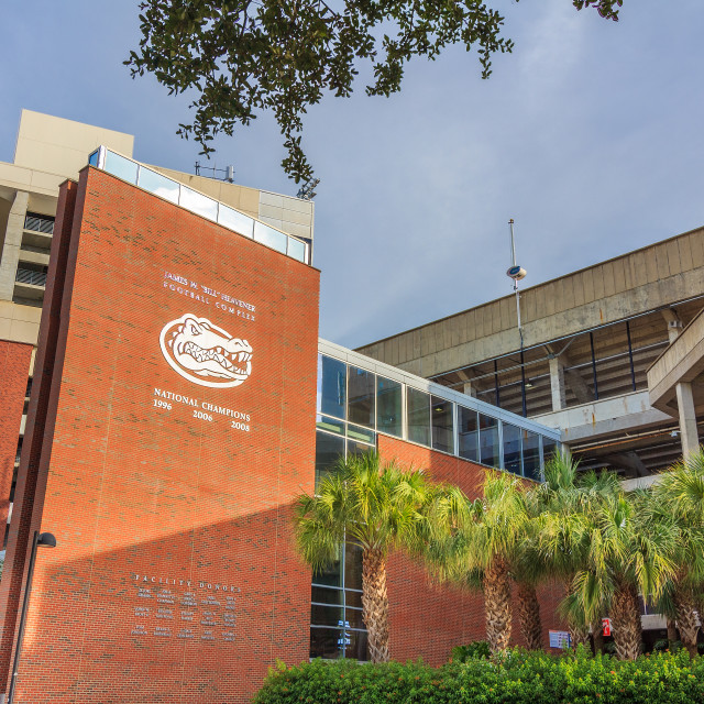 """Ben Hill Griffin Stadium at the Unviersity of Florida"" stock image"