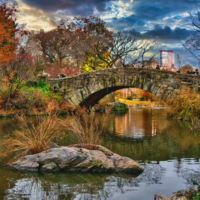 """""""Central Park in New York"""" stock image"""